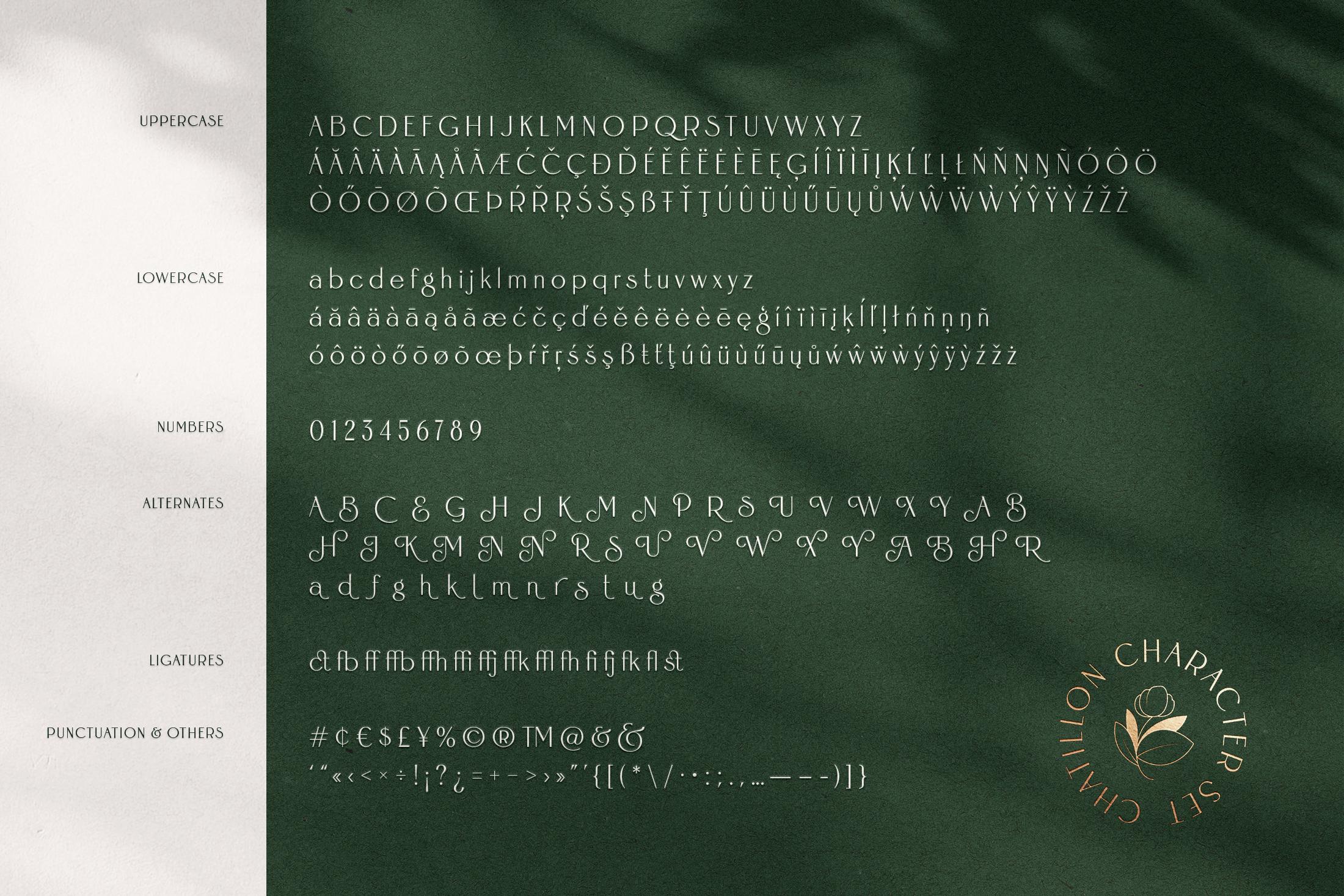フォント好きへ贈るモダンな英語フォント大全集